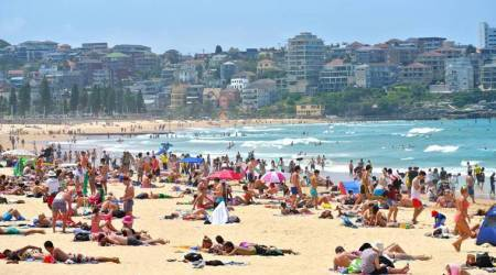 Sydney records hottest day in almost 80 years