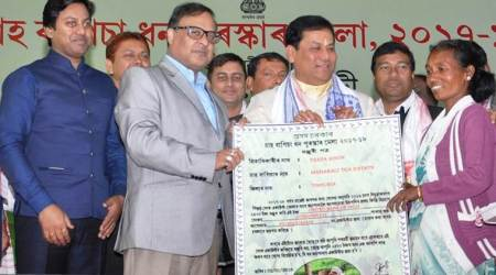 Assam to give Rs 182 crore to 6.58 lakh tea labourers for opening bank accounts