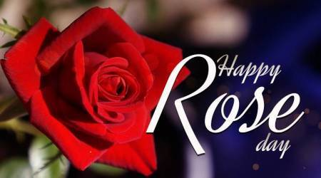 Rose Day 2018: Types of Roses and TheirMeanings