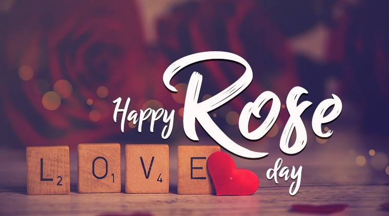 Happy Rose Day, Happy Rose Day Wishes, Happy Rose Day Greetings, Rose Day
