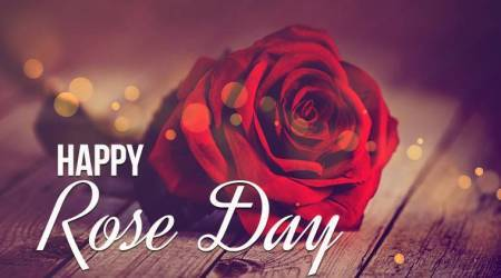 Valentine's Week 2018: What's the Significance and Importance of RoseDay