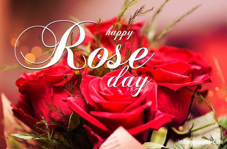 happy rose day, happy rose day wishes, happy rose day greetings, rose day photos, rose day images, rose day, rose day wishes, rose day WhatsApp messages, rose day facebook messages, Valentine week, Valentine day, Propose Day, Chocolate Day, Teddy Day, Promise Day, Hug Day, Kiss Day, Valentine's Day, indian express, indian express news