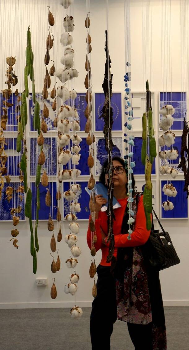 India art fair, India Art Fair 2018, India Art Fair 2018 Delhi, India Art Fair pictures, where is India Art Fair 2018, Indian express, Indian express news