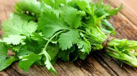 The humble dhaniya is great for your eyes, skin and menstrual cycle: Benefits ofcoriander