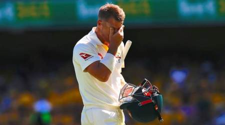 I was probably going too hard on myself and trying to fight the inner demon: David Warner