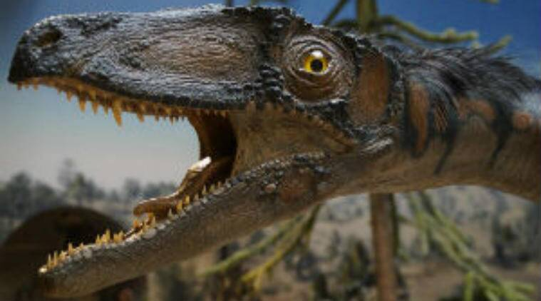 Dinosaur populations, prehistoric times, University of Reading, asteroid, avian dinosaurs, T-rex, Great Dying, fossil evidence, diplodocus, meteor shower
