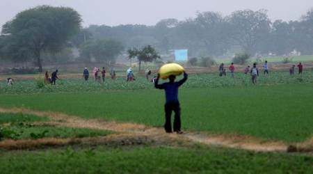 Agriculture Policy: An actionable strategy to make doubling of farmers' income possible