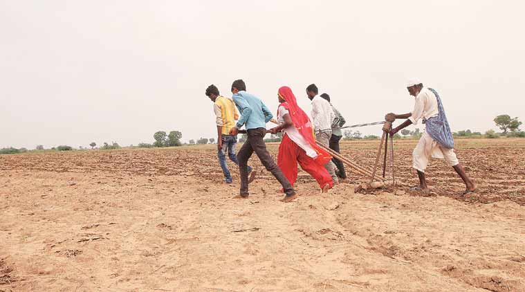 Agriculture, rural economy in Union Budget 2018