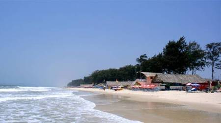 Goa govt warns locals, tourists of toxic 'blue bottles' near beaches