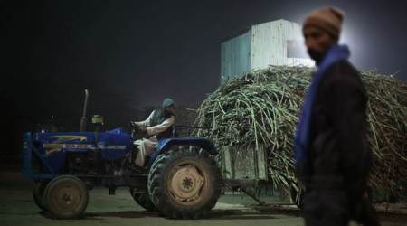 Amid higher domestic production: Centre raises sugar import duty to100%