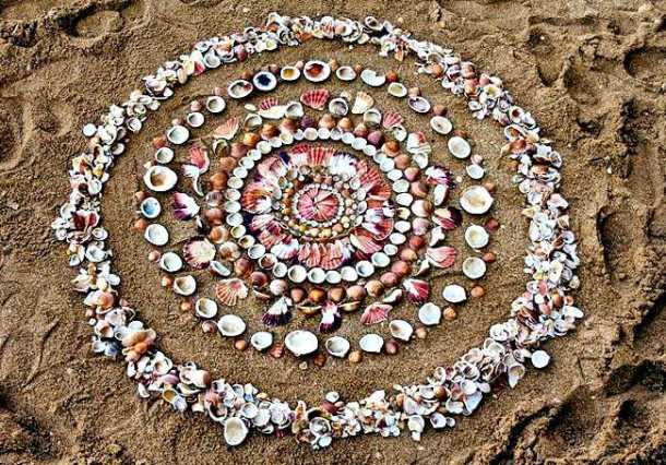 James Brunt, artist James Brunt, James Brunt facebook, James Brunt twitter, James Brunt makes art from natural objects, art from natural objects, viral pictures, viral pictures facebook, social media viral, indian express, indian express news