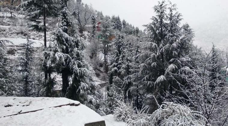 snowfall in kashmir, kashmir snowfall, fresh snow in kashmir pics, kashmir receives fresh snowfall pics, kashmir receives fresh snow, Indian Express, Indian Express news