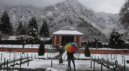 Fresh snowfall ends dry spell in Kashmir, Himachal Pradesh; rains lash parts of Punjab