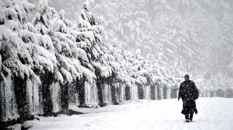 kashmir weather, snowfall, kashmir temperature today, imd, weather prediction, indian express