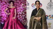 Sridevi: From Queen Bee to Style Star