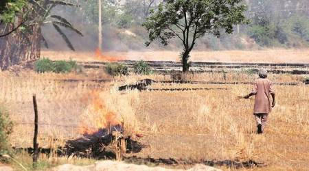 Union Budget 2018: To end stubble-burning and fight pollution, a scheme for farmers