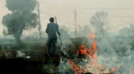 India's $230 million plan to stop crop burning that pollutes Delhi falls short of estimates: report