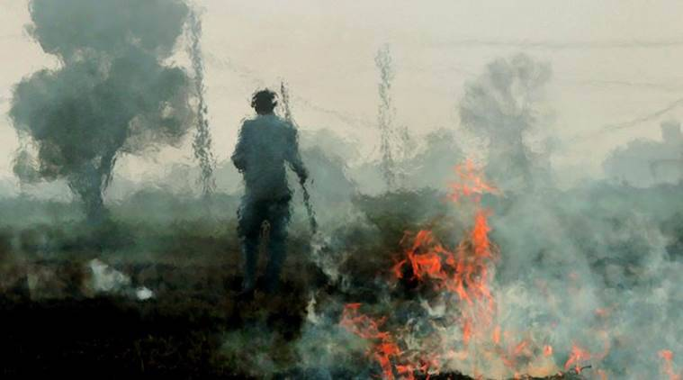 India lacks funds to stop crop burning that pollutes Delhi