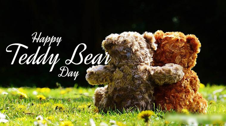 teddy day 2018, happy teddy day, teddy day, happy teddy day, teddy day gifts, teddy bear gifts, teddy day gift ideas, velntines's day, valentines week, valentines day gifts, gifts for girlfriend, gifts for her, indian express