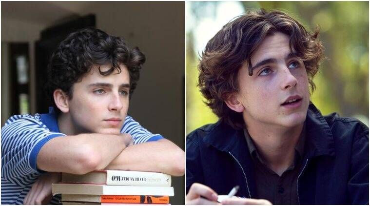 timothee chalamet in call me by your name and lady bird