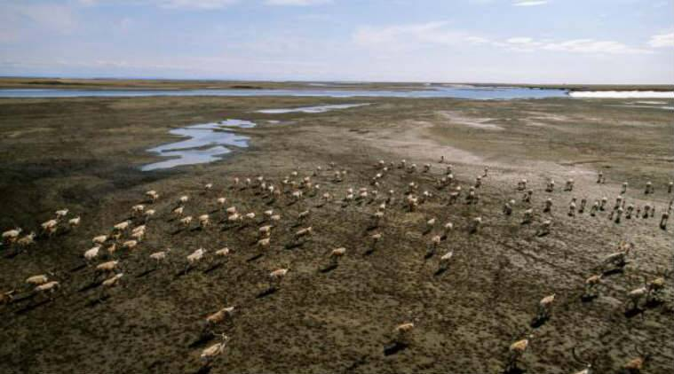Arctic permafrost, natural mercury, US Geological Survey, food chains, metal poisoning, Ice Age, global mercury cycle, toxins, permafrost soils, neurological effects