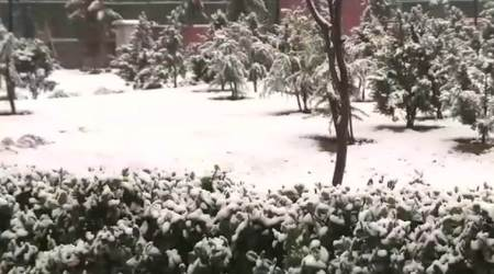 Weather LIVE UPDATES: Rain, hailstorm likely in Delhi today, fresh snowfall in Kashmir,Shimla