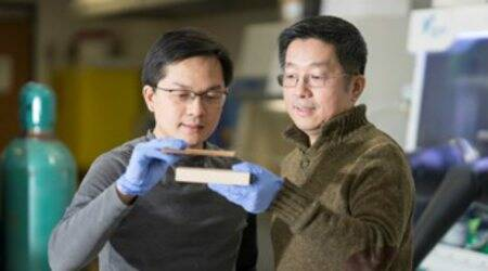 New process to make wood as strong assteel