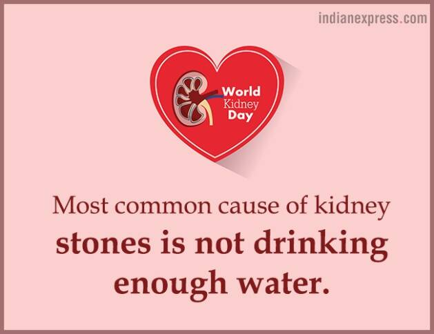 World Kidney Day, interesting facts about kidneys, World Kidney Day theme, World Kidney Day 2018 theme, World Kidney Day Women health, World Kidney Day date, World Kidney Day March 8, World Kidney Day theme for 2017, 2016, indian express, indian express news
