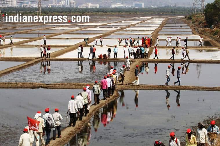 Maharashtra Farmers Protest, Farmers Protests Photos, Mumbai Farmers Protest, Kisaan March, All India Kisan Sabha, AIKS, Kisaan March photos, Mumbai Protest, Farmers March, Indian Express