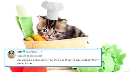 What would your pet do if it were human? Food tester to soccer mom, here's what Twitterati think