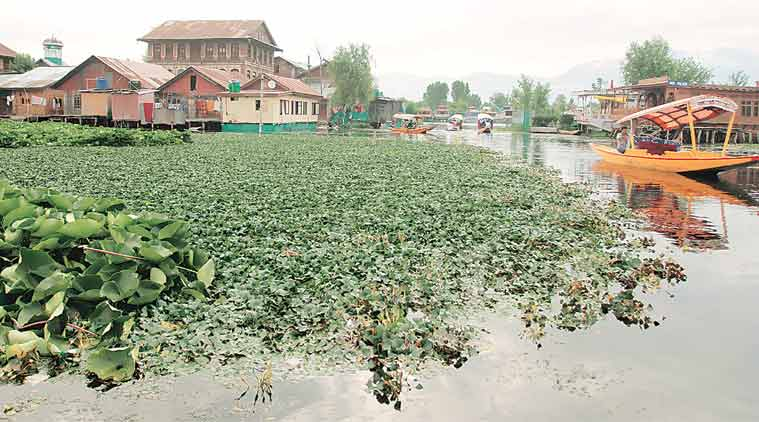 mehbooba mufti, jammu-kashmir, Srinagar 22 wetlands, J&K budget session, srinagar flood, wetlands encroachments, J&K tourism, india news, kashmir news