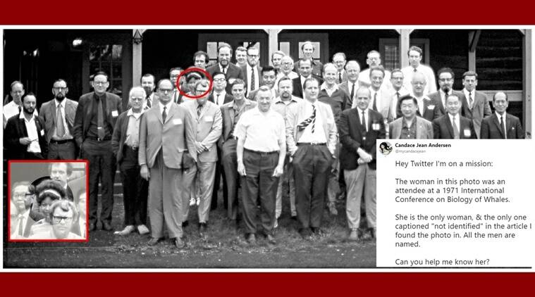 only woman in 38 scientists, twitter finds out the identity of woman from an old photo, Candace Jean Andersen Twitter, Candace searches for only woman in photo Twitter, Twitter viral, Twitter Trending, Indian Express, Indian Express News