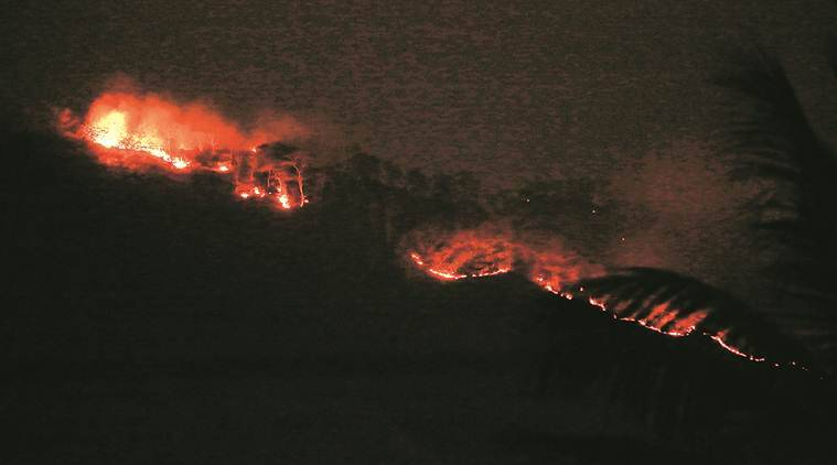 Sanjay Gandhi National Park fire