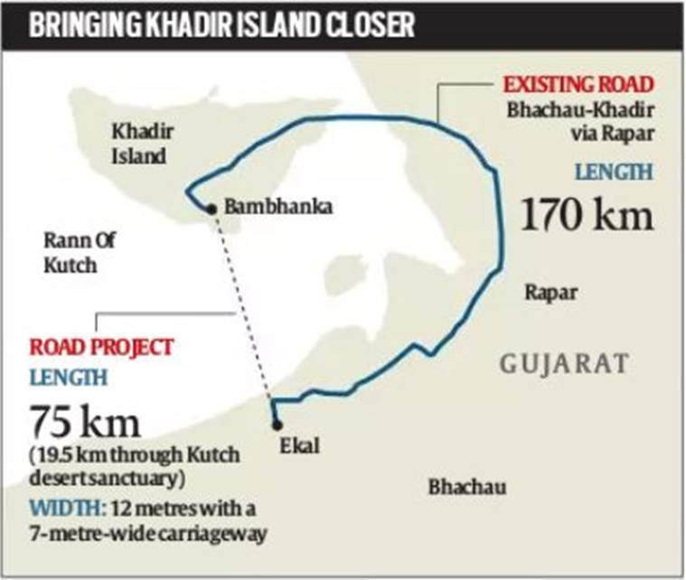 National wildlife board gives green signal to road through Kutch sanctuary