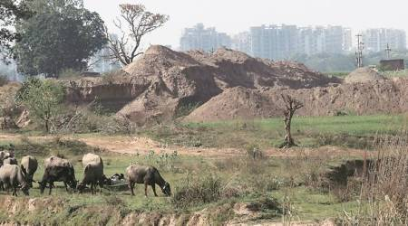 Panchkula illegal mining: Men attack forest team, flee with impoundedmachines
