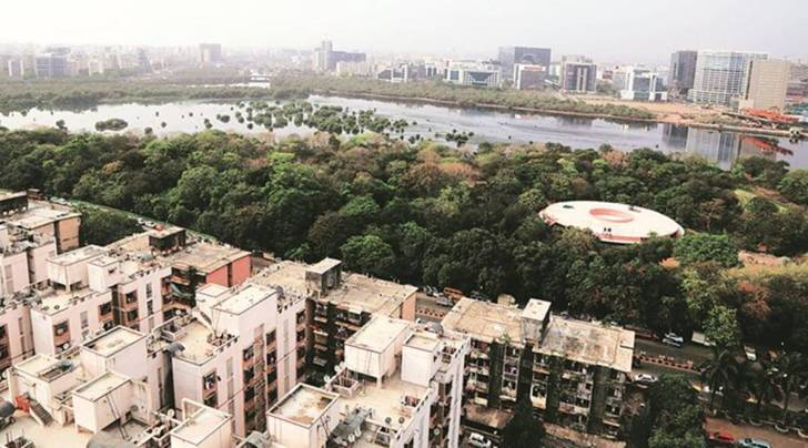 Mahim nature park, Dharavi nature park, Save Mahim Nature park, Mumbai park controversy, Mahim nature park controversy, Mumbai News, Indian Express
