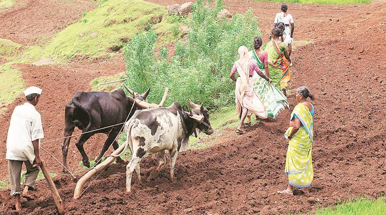 Maval farmers oppose PCMC's pipeline project