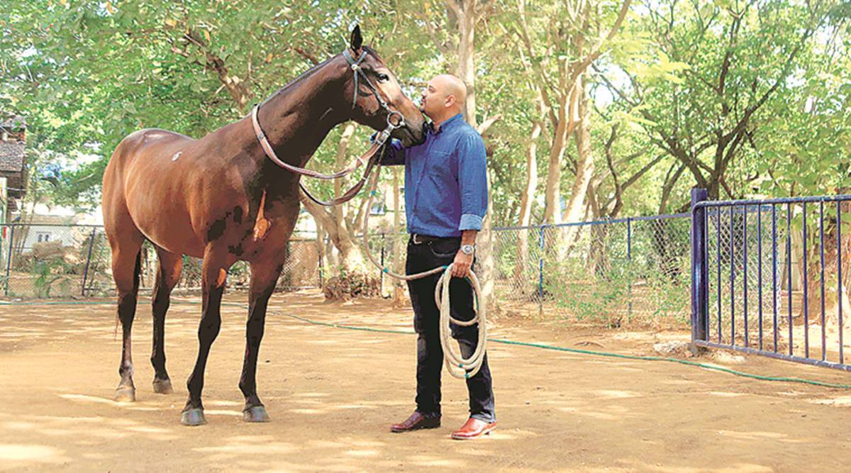 The Price Of Horse Can Never Determine Its Ability Cities News The Indian Express