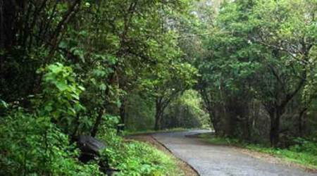 Why the nature park is vital to Mumbai's environment