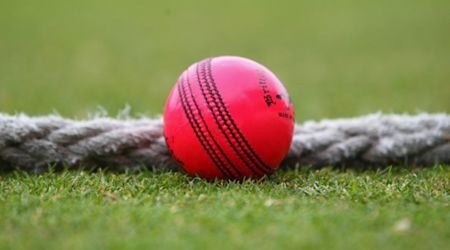 What is cricket's pink ball challenge about?