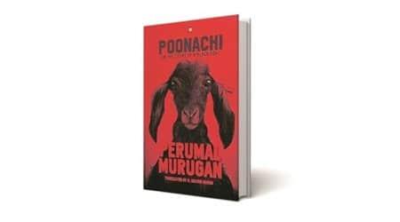 Poonachi, Poonachi book review, Story of a Black Goat, Perumal Murugan, Indian express book review