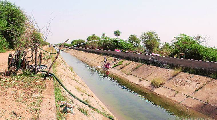 Gujarat: Farmers protest, demand release of Narmada water to save Rabi crops