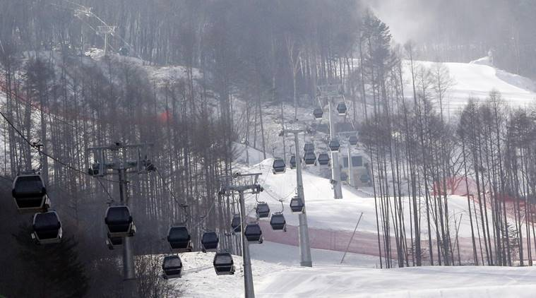 gondolas make their way through a thinned forest up the ski slope