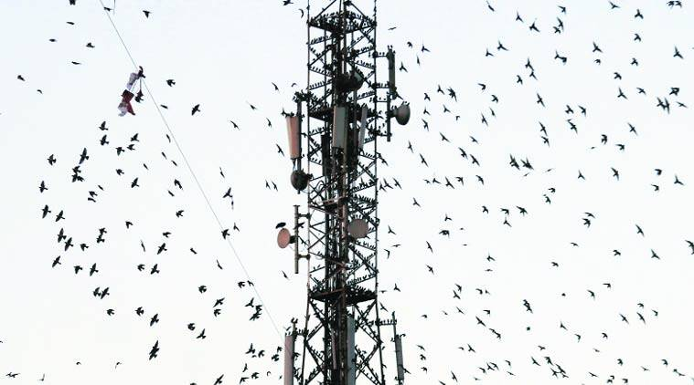 telecom sector  spectrum cap easing  leeway on payments temporary relief