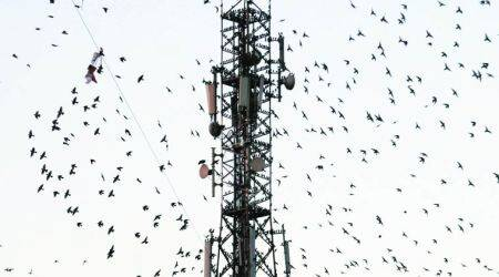 Telecom Sector: Spectrum cap easing, leeway on payments temporary relief