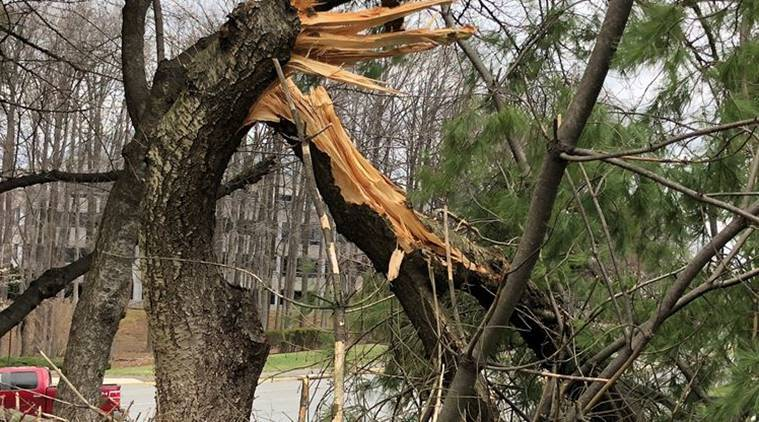 Strong winds topple bus as nor'easter pounds East Coast