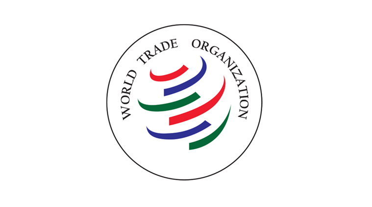 Informal WTO ministerial meeting begins in New Delhi; 52 nations participating