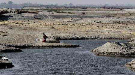 'Situation hasn't been this bad since 1988': At mouth of capital, the Yamuna runs dry