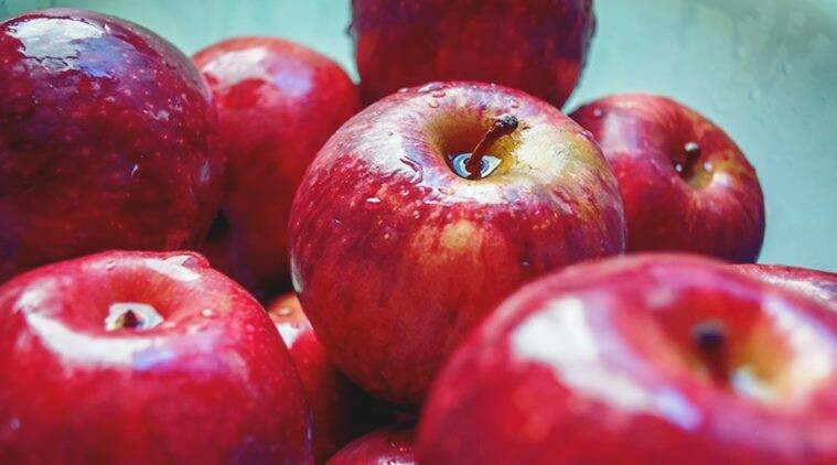 Ahead of polls weather unpaid dues haunt Himachal apple farmers