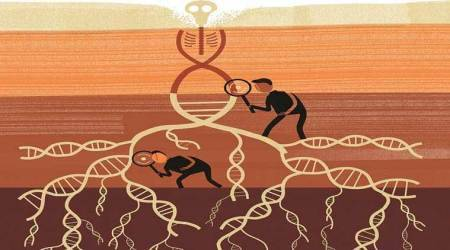 The Long Walk: Did the Aryans migrate into India? New genetics study adds todebate